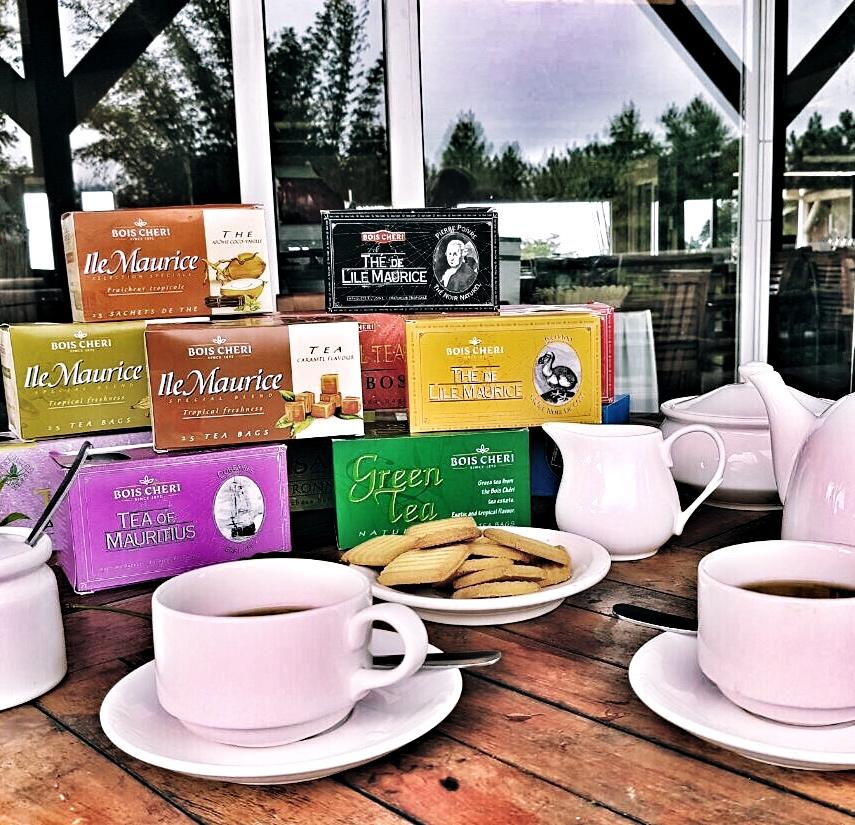 Le piantagioni del thè di Bois Chéri