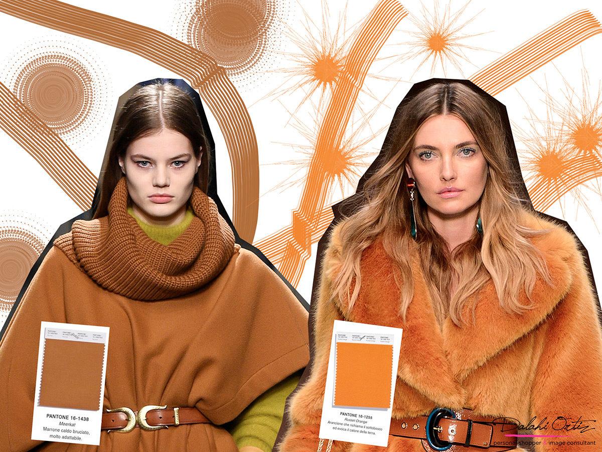 Fall Winter 2018 Color Trends Here S How To Choose Them Dalahi Ortiz